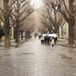 東京大学に合格した人の共通点